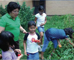 Alexandra Mendoza teaches her students at Metz Elementary math, science, and language skills while they work in the garden.